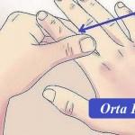 Orta parmak - Bu parmak kalp, ince bağırsak, kan dolaşım ve solunum sistemi ile alakalıdır. Eğer sürekli baş dönmesi ve uyku hali yaşıyorsanız, şikayetlerinizin geçmesi için orta parmağınızı ovalamanız yeterli olacaktır.
