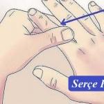 Küçük parmak - Baş, boyun ve böbrek ile bağlantılıdır. Yani,ne zaman bir baş ağrısı ya da boyun bir ağrı şikayetiniz varsa, ya da böbrekleriniz ağrıyor ise serçe parmağınıza masaj yaparak kendinizi rahat hissedebilirsiniz.